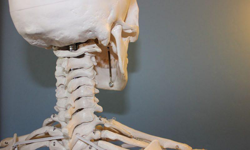 bone-cancer-1